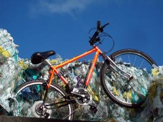 World rider - mountain yak, orange Free Photo