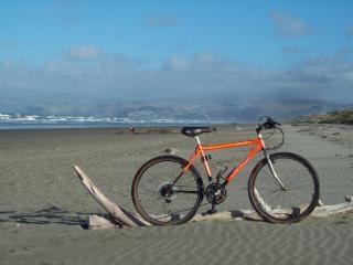 World rider - mountain yak, sand Free Photo