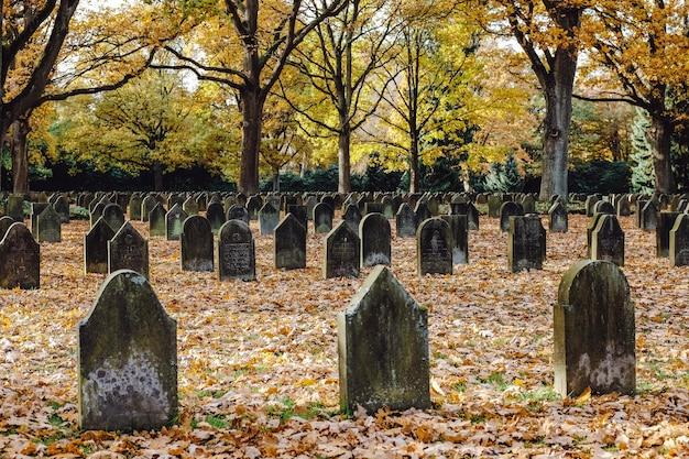 Cimitero della prima guerra mondiale Foto Gratuite