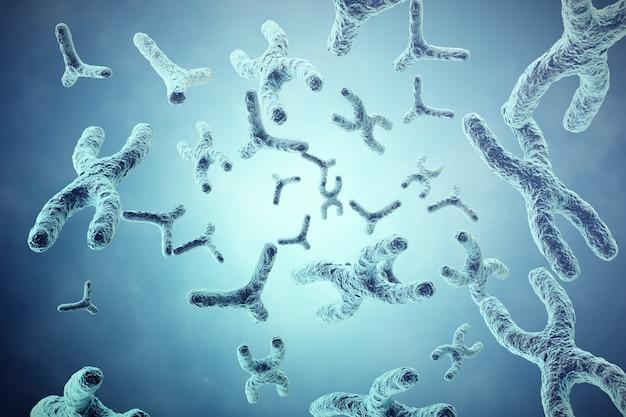 Xy-chromosomes on grey Premium Photo