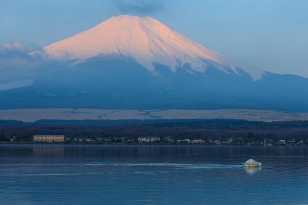 日本の白鳥による山中湖と富士山の反射 Premium写真