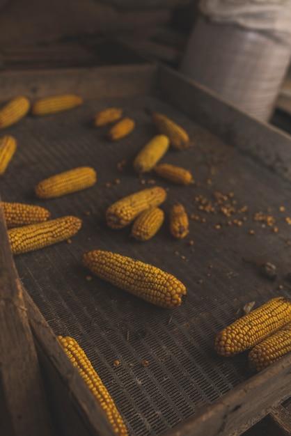 Yellow corn in metal box Free Photo