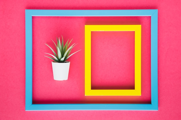 Yellow frame next to decorative plant Free Photo