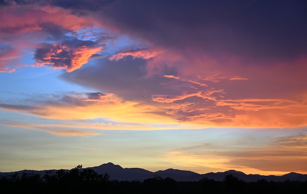 Yellow gold sky evening in tropical countries summer Premium Photo