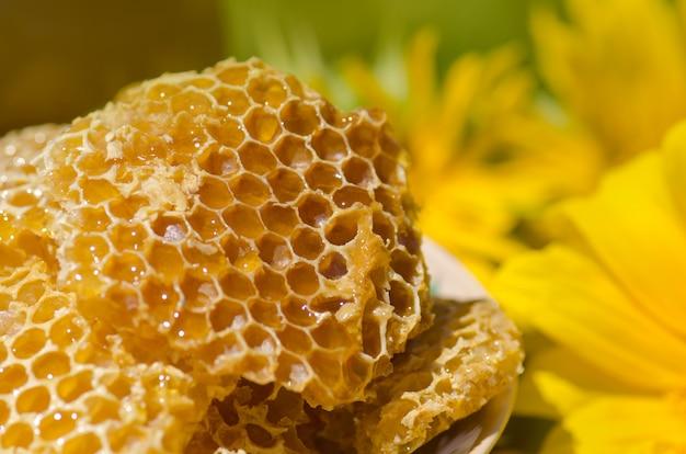 Yellow honeycomb slice. honey cell slice. bowl with fresh honeycombs and honey Premium Photo