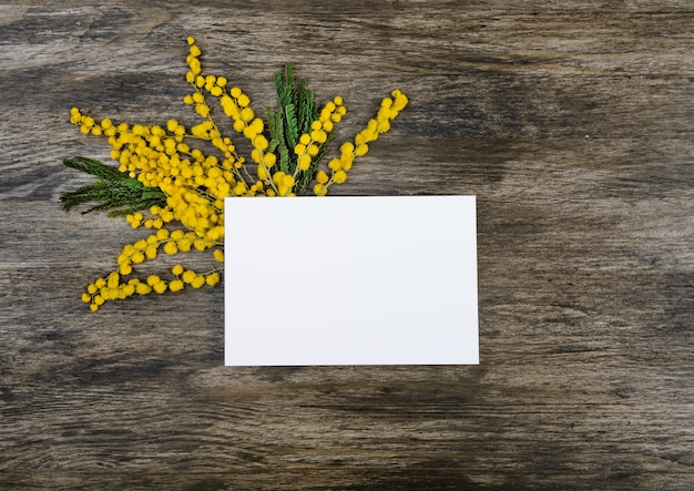 Yellow mimosa flowers with green leaves on the side under the card Free Photo