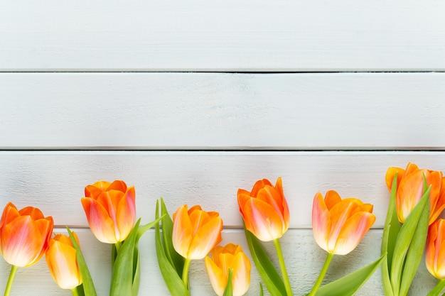 黄色のパステルカラーの黄色の背景に花。春を待っています。 Premium写真