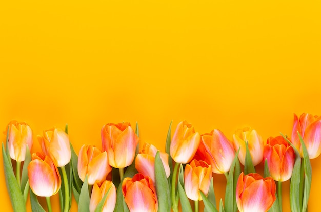 Yellow pastels color flowers on yellow background.waiting for spring. happy easter card. flat lay, top view. copy space. Premium Photo