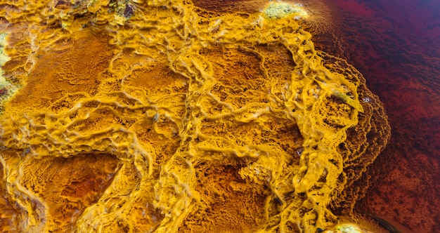 Yellow stromatolites illuminated by the sun and surrounded by red water by minerals Premium Photo