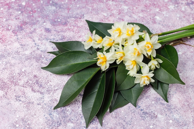 黄色の白い水仙、水仙、明るい背景にジョンキル花。3月8日女性の日。 無料写真