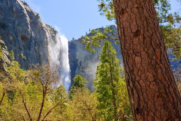 Yosemite bridalveil fall waterfall california Premium Photo