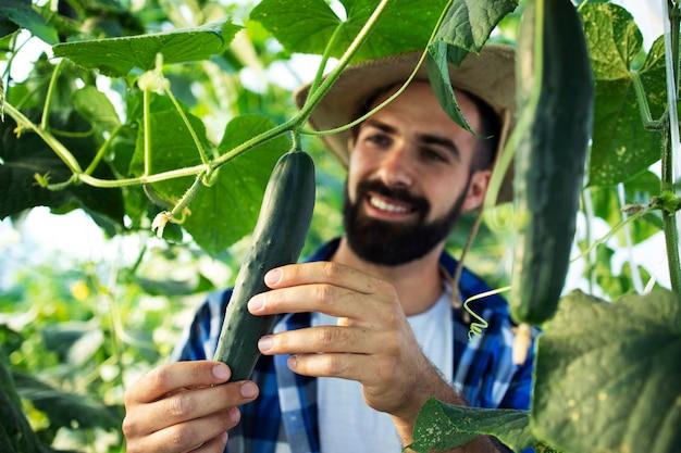 Giovane agricoltore barbuto osservando e controllando la qualità delle verdure in serra Foto Gratuite