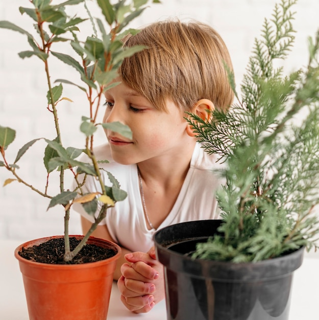 Young boy looking at two pots with plants Free Photo