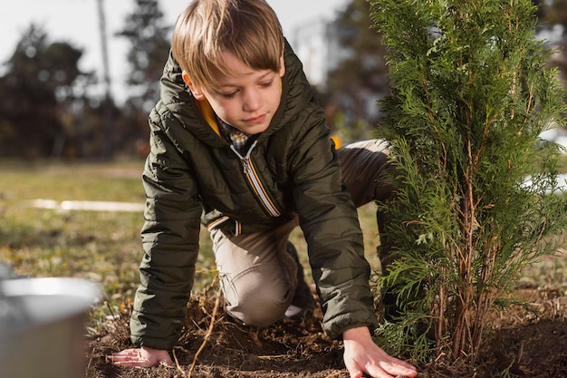 Young boy planting a tree outdoors Free Photo