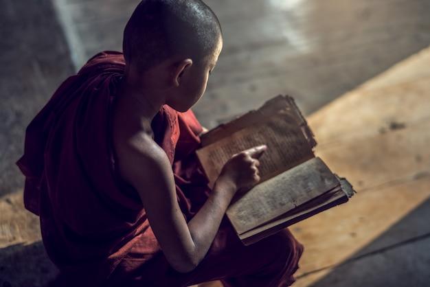 Young buddhist novice monk reading and study in monastery, myanmar Premium Photo