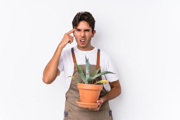 Молодой кавказский садовник, держащий изолированное растение, показывает жест разочарования указательным пальцем. Premium Фотографии