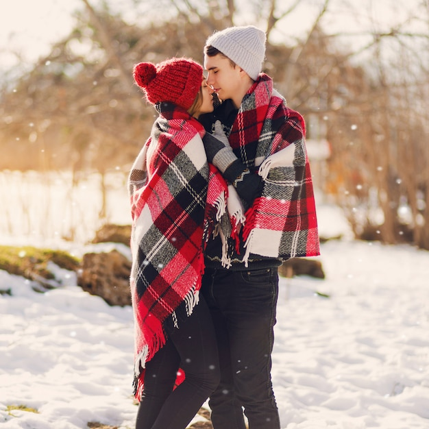 雪原にキス毛布広告を着ている若いカップル 無料写真