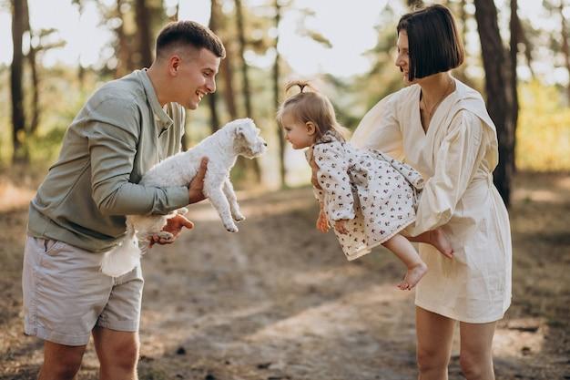夕日の森を歩くかわいい小さな娘と若い家族 無料写真