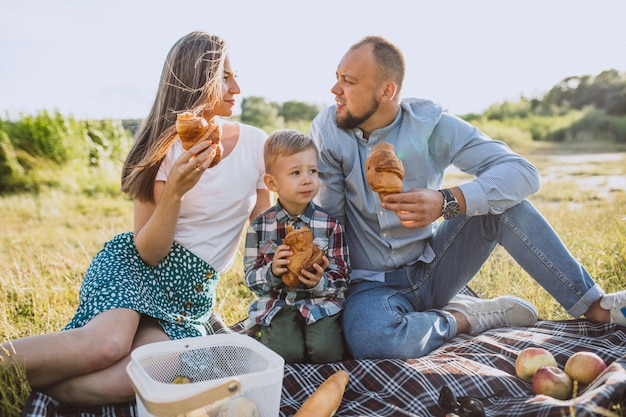 Young family with little son having picnic in park Free Photo