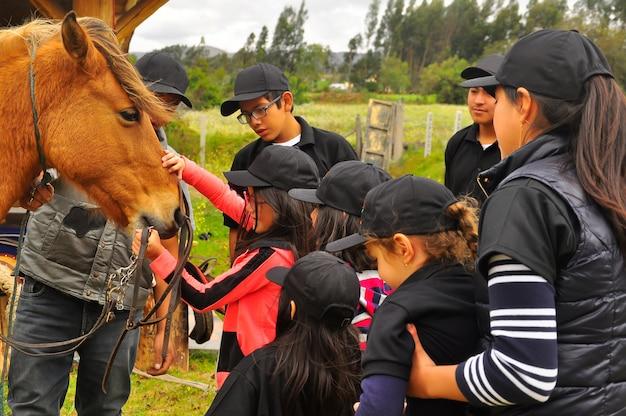 若い女の子と10代の若者が馬について学びます。エクアドルの乗馬学校 Premium写真