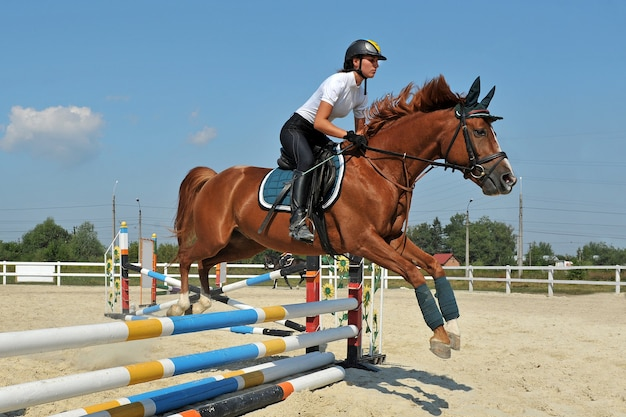 Young girl on her bay horse jumps over a barrier on  equestrian competitions. Premium Photo