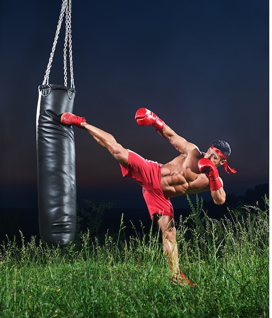 Young handsome male boxer demonstrating skills Premium Photo