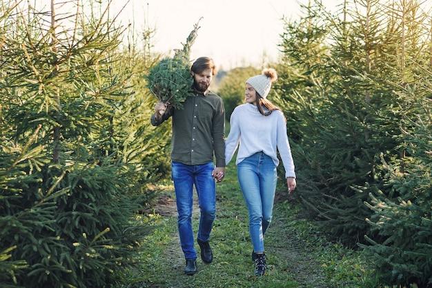 若い幸せなカップルは、休日を準備するプランテーションで新鮮なクリスマスツリーを購入しました。幸せな冬の休日のコンセプト。 Premium写真