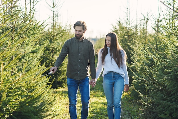 冬の休暇を準備するプランテーションでクリスマスツリーを選ぶ若い幸せな家族。 Premium写真