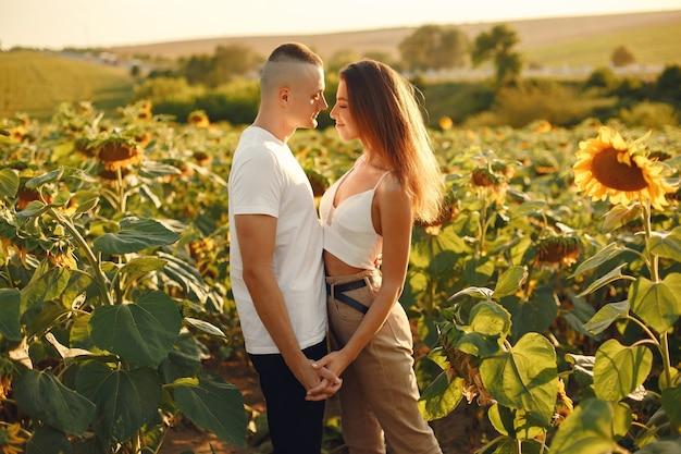 Молодая влюбленная пара целуется в поле подсолнечника. портрет пары, позирующей летом в поле. Бесплатные Фотографии
