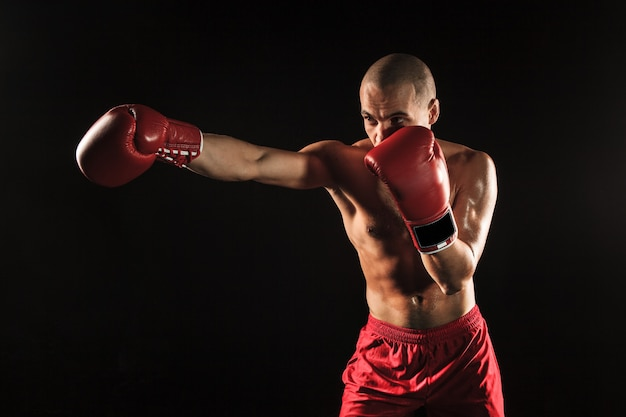 The young male athlete kickboxing on a black background Free Photo