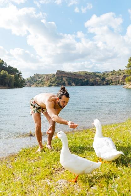 Young man feeding gooses on riverbank Free Photo