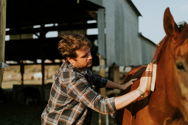 69ab28ad2c83b Young man grooming his horse Photo