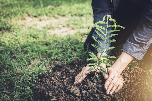 地球の日のように庭に木を植え、世界の概念を保存する若い男 Premium写真