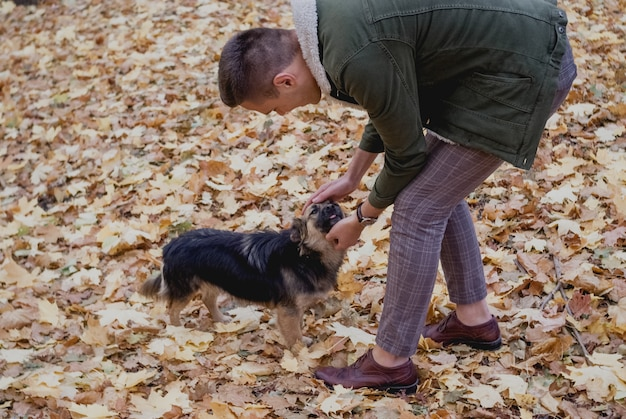Young man playing with funny dog in autumn park. save animals Premium Photo