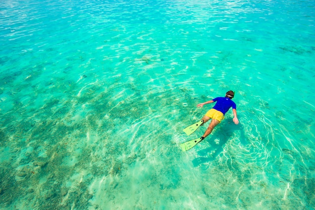 Young man snorkeling in clear tropical turquoise waters Premium Photo