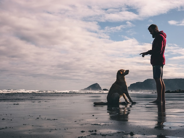 Young man training with his dog on the beach Premium Photo