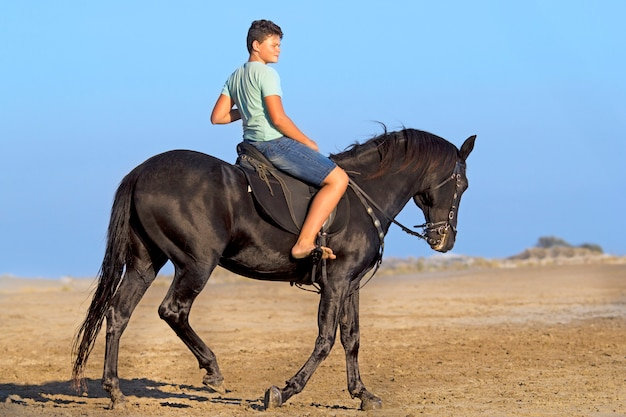 Young rider on the beach Premium Photo