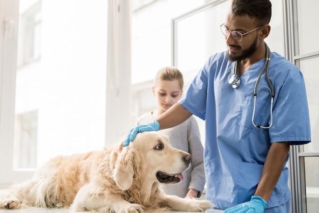 Молодой ветеринар в униформе стоит возле больной собаки на столе и обнимает ее перед медицинским осмотром Premium Фотографии