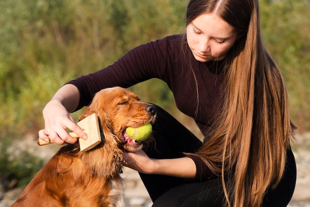 Young woman brushing a cocker spaniel Free Photo