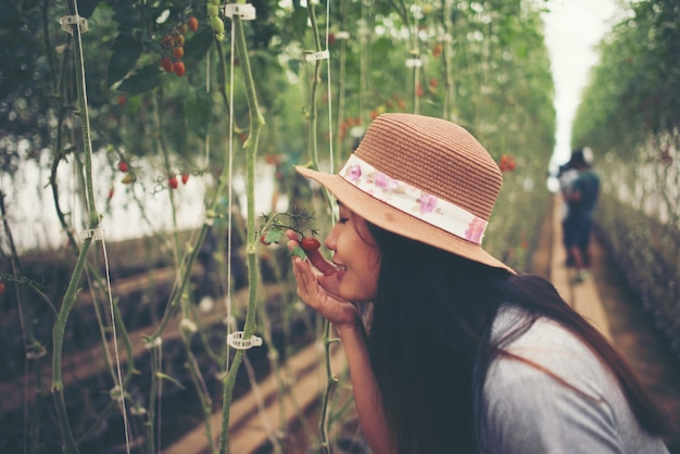 Young woman in a greenhouse with organic tomatoes, harvesting. Free Photo