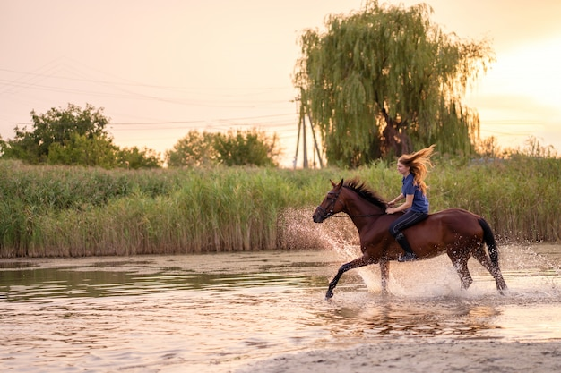 A young woman riding a horse on a shallow lake. a horse runs on water at sunset. care and walk with the horse. strength and beauty Premium Photo