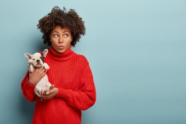 아프로 머리 작은 개를 들고 젊은 여자 무료 사진