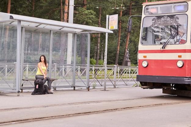 검은 Briard를 가진 젊은 여자는 그들 근처에서 트램을 타고 도시 거리의 대중 교통 역에 앉아 있습니다. 프리미엄 사진