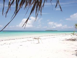 Zanzibar, sea Free Photo