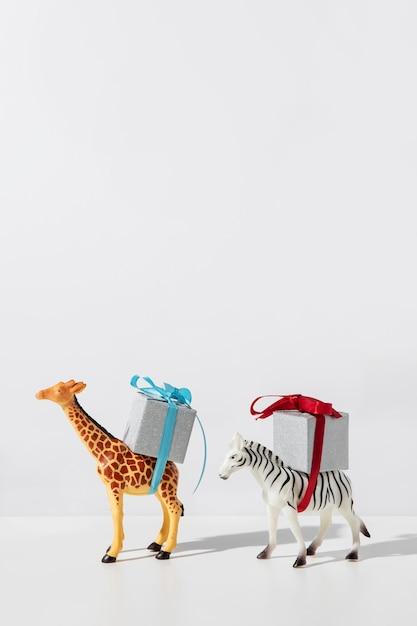 선물을 들고 얼룩말과 기린 프리미엄 사진