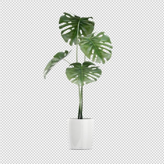 等尺性植物3 dレンダリング Premium Psd