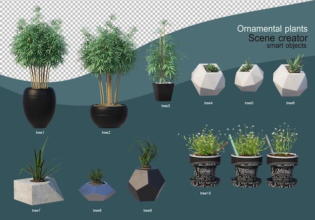 3d display of various types of ornamental arrangement Premium Psd