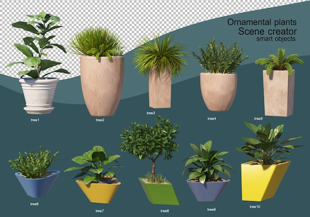 3d display of various types of ornamental arrangement Premium Psd