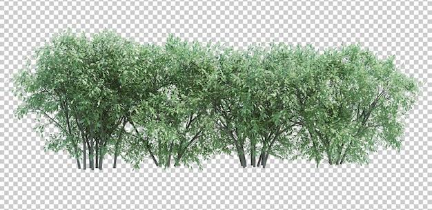 흰색에 고립 된 3d 렌더링 브러쉬 트리 프리미엄 PSD 파일