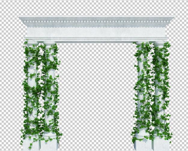 分離された3dレンダリングアイビー植物 Premium Psd